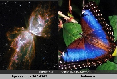 Туманность - бабочка