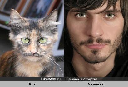 Кот с человечным лицом -2 (коточеловеки возвращаются:)