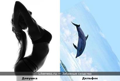 Дельфин в Изгибах Девушки
