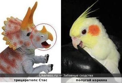 По одной из теорий, птицы произошли от динозавров