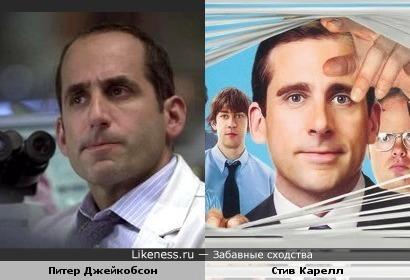 Питер Джейкобсон похож на Стива Карелла