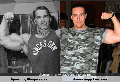 Александр Невский похож на Арни