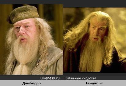 Дамблдор похож на Гендальфа