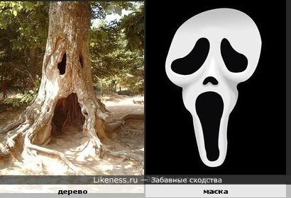 Эта маска похожа на дерево