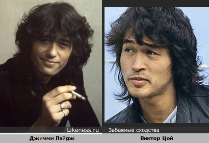 Музыкант Джимми Пэйдж похож на музыканта Виктора Цоя