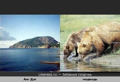 """Гору Аю-Даг стали называть """"Гора-медведь"""" из-за сходства с пьющим медведем"""