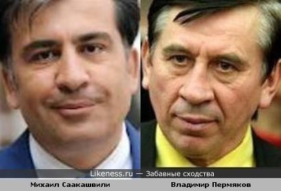 Михаил Саакашвили и Владимир Пермяков