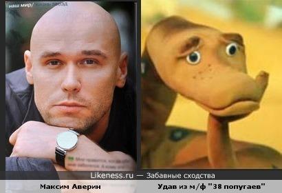 Максим Аверин (Глухарь) похож на Удава)