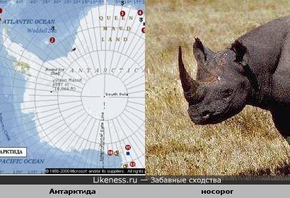 Антарктида похожа на носорога