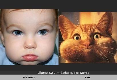 малыш напомнил кота ( щечки похожие)