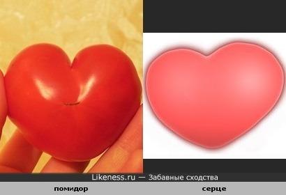 помидор как сердце