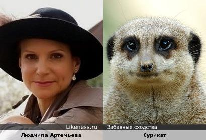Не судите строго :), но просто меня давно заклинило, что есть сходство ))