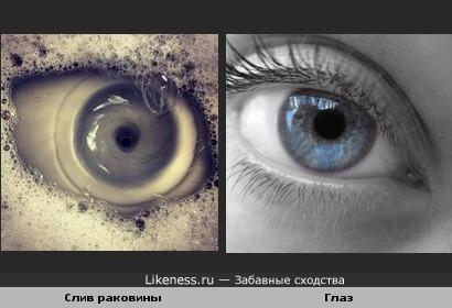 Фотография слива раковины похожа на глаз