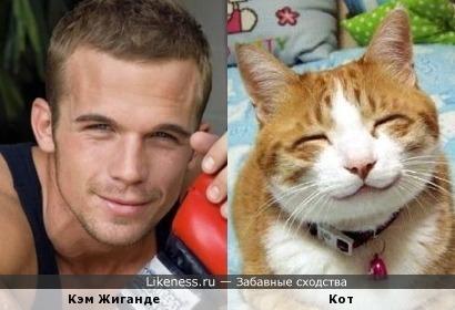 Кэм Жиганде похож на улыбающегося котяру