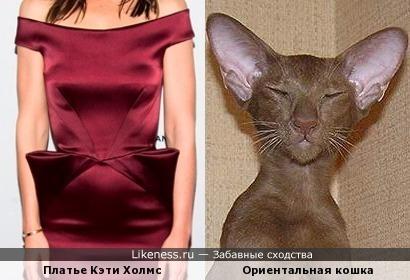 Платье Кэти Холмс похоже на ориентальную кошку