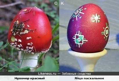 Мухомор красный и яйцо пасхальное