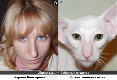 Марина Бочкарева и ориентальная кошка