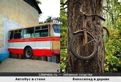 Автобус в стене и Велосипед в дереве