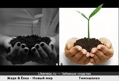 Ёлка vs. Юлька: украинский новый мир