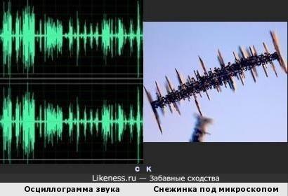 Осциллограмма звукового сигнала и Снежинка под микроскопом