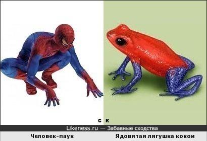 Человек-паук и Ядовитая лягушка кокои