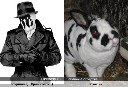 Кролик Роршаха