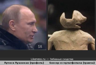 Путин в Лужниках как травмированный боксер из м/ф (superoofer)