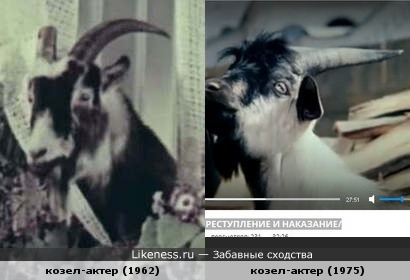Баранов не нашел, козлов - целых 2! Среди главных героев фильмов