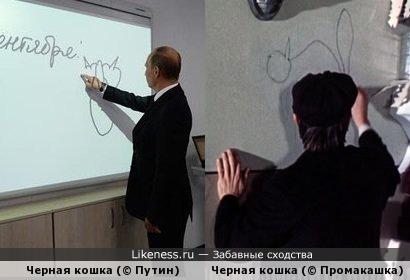 Где учат рисовать черную кошку? Особенно, сзади!