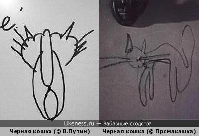 Черная кошка (© В.Путин) и Черная кошка (© Промакашка). Найдите разницу!