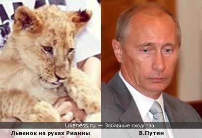 Пропутинские глаза, нос, подбородок (а у львов есть подборобки)