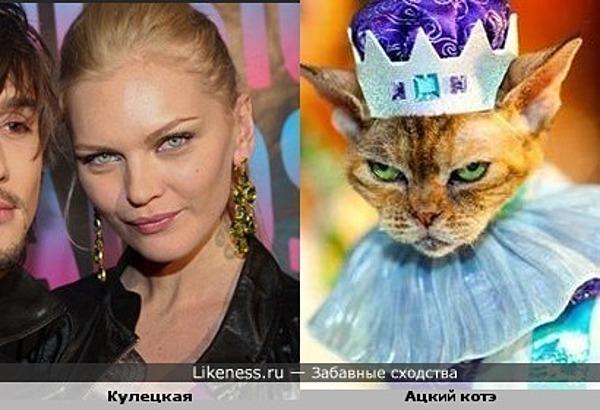 Кулецкая похожа на злого кота