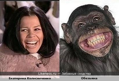Екатерина Колисниченко похожа на Обезьяну