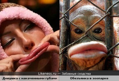 Девушка с накаченными губами похожа на обезъянку