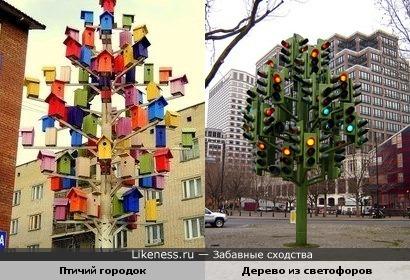 Птичий городок напоминает дерево из светофоров