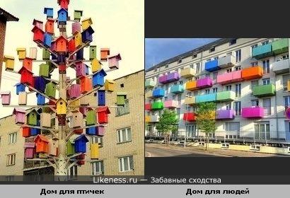 Птичий городок похож на дом с разноцветными балконами.
