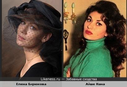 Елена Бирюкова похожа на Айше Нана