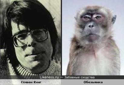 Стивен Кинг похож на Обезьяну