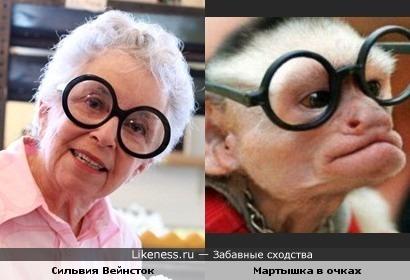 Сильвия Вейнсток похожа на мартышку в очках