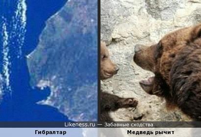 Полуостров и Медведь