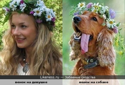 Венок из полевых цветов - символ счастья, эмблема молодости и свободного духа.