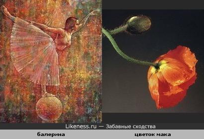 """Балерина с картины Валерия Кота """"Прима""""(2003) и цветок мака (фото Роберта Мэпплторпа)"""