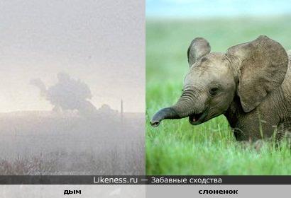 Дым над заводом на горизонте похож на слоненка