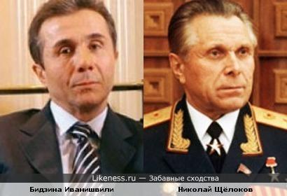 Бидзина Иванишвили и Николай Щёлоков