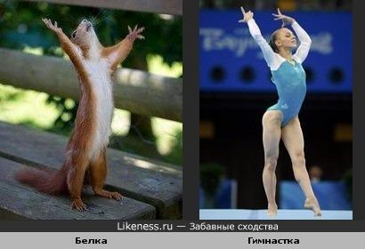 Белочка-гимнастка :)
