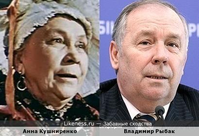 Владимир Рыбак всегда напоминает мне маму Прони Прокоповны
