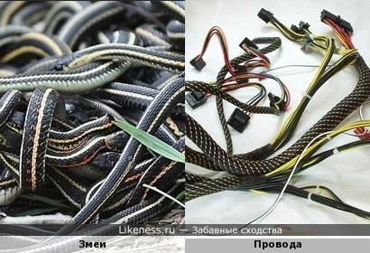 Провода похожи на змей