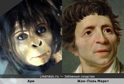 Персонаж «Планеты обезьян» и Жан-Поль Марат