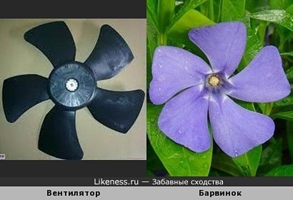 Живой вентилятор