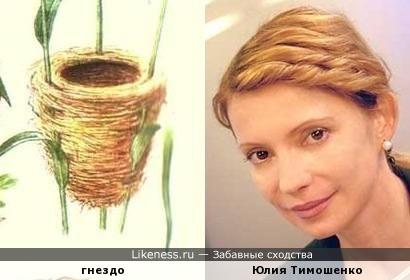 Прическа Юлии Тимошенко по форме напомнила птичье гнездо